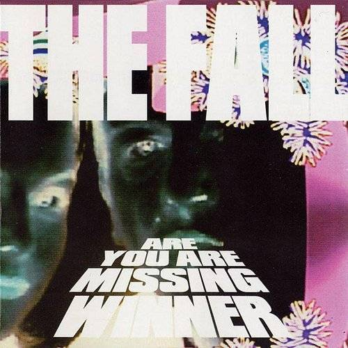 The Fall - Are You Are Missing Winner [Import]