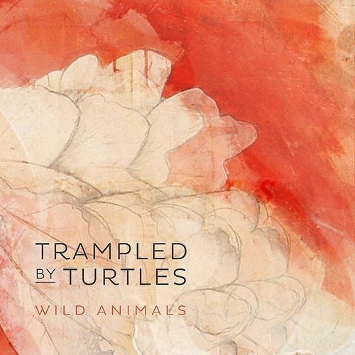 Trampled By Turtles - Wild Animals [Single]