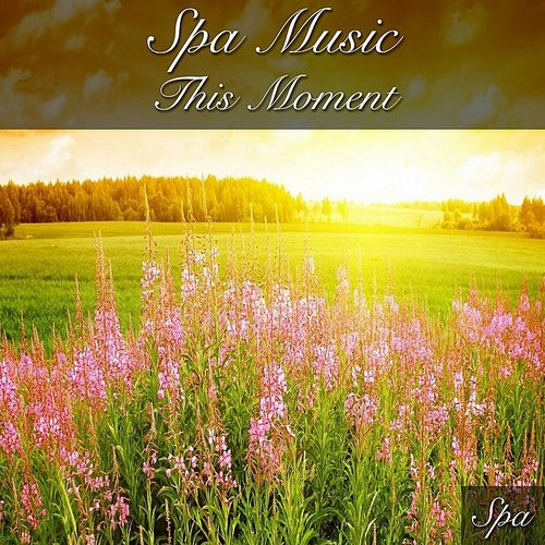 SPA - Spa Music This Moment