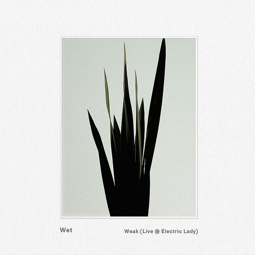 Wet - Weak (Live @ Electric Lady) - Single