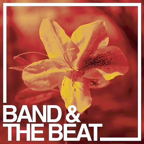 Band & The Beat - Straight And Narrow