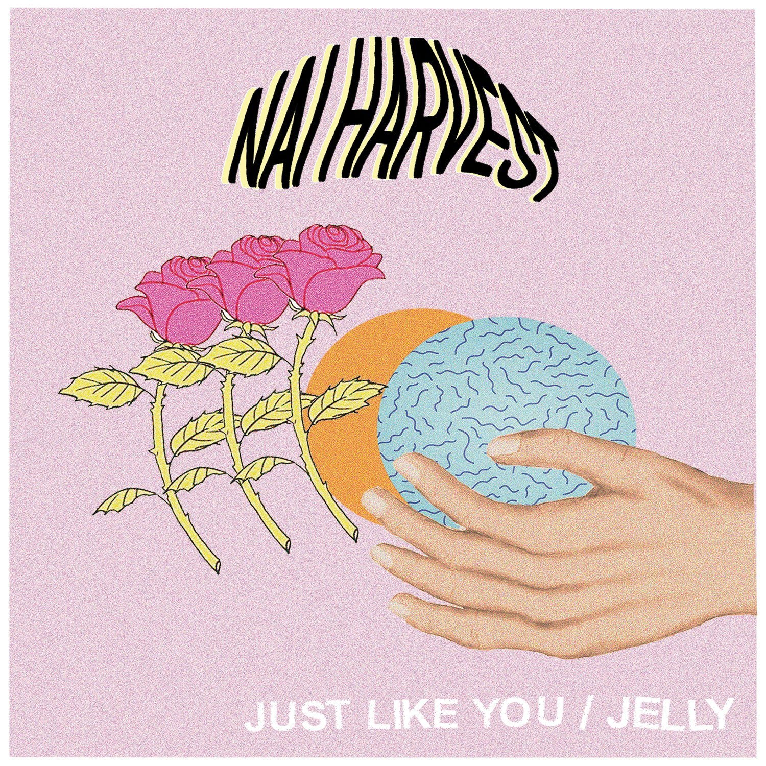 Nai Harvest - Just Like You / Jelly [Vinyl Single]