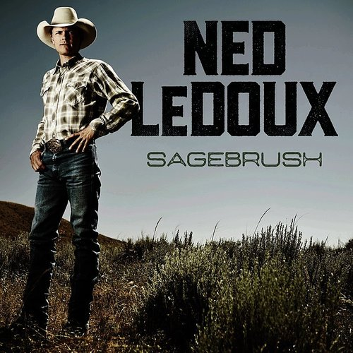 Ned LeDoux - Some People Do - Single
