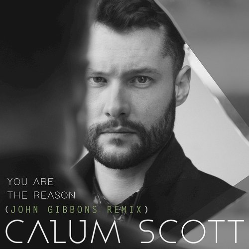 Calum Scott - You Are The Reason (John Gibbons Remix) - Single