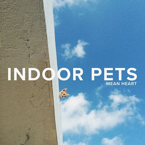 Indoor Pets - Mean Heart - Single