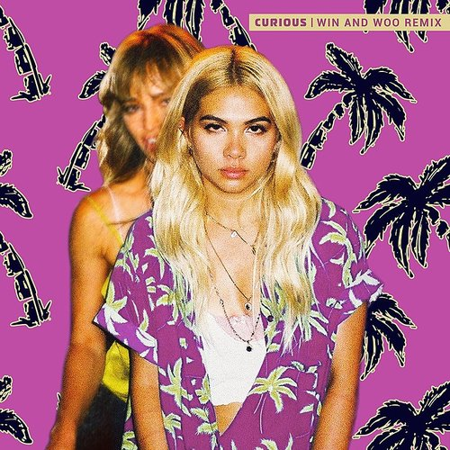 Hayley Kiyoko - Curious (Win And Woo Remix) - Single