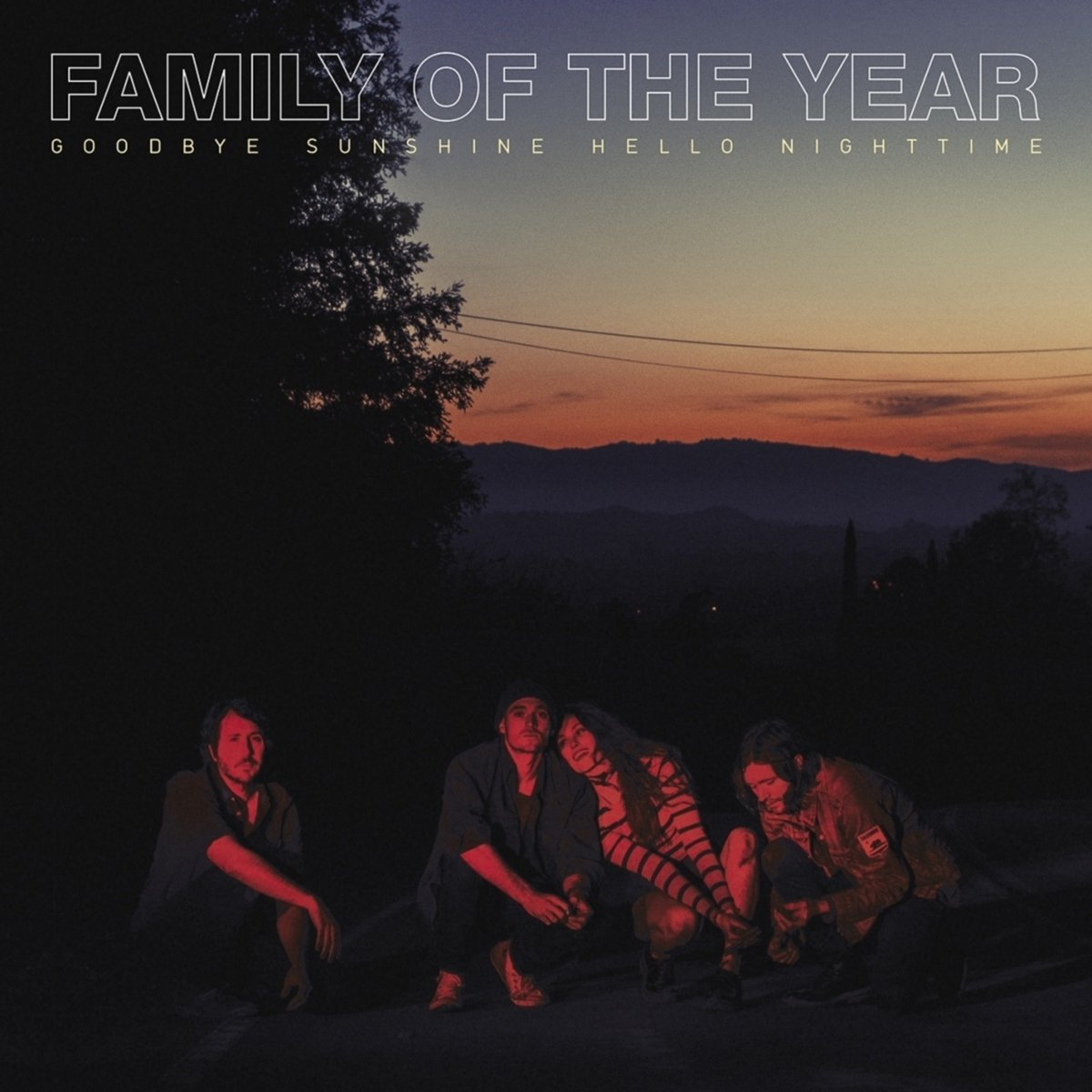 Family of the Year - Goodbye Sunshine, Hello Nighttime [LP]