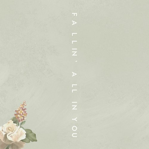 Shawn Mendes - Fallin' All In You - Single