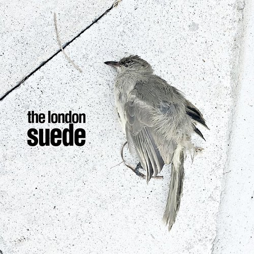 Suede (The London Suede) - The Invisibles - Single