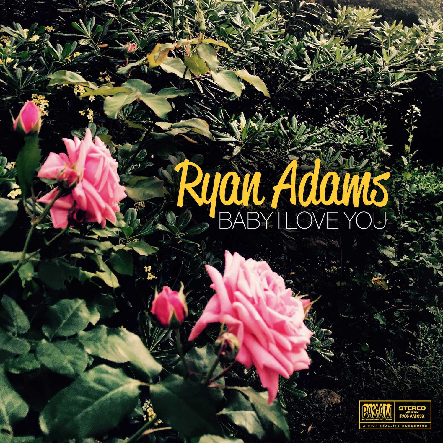 Ryan Adams - Baby I Love You [Limited Edition Vinyl Single]