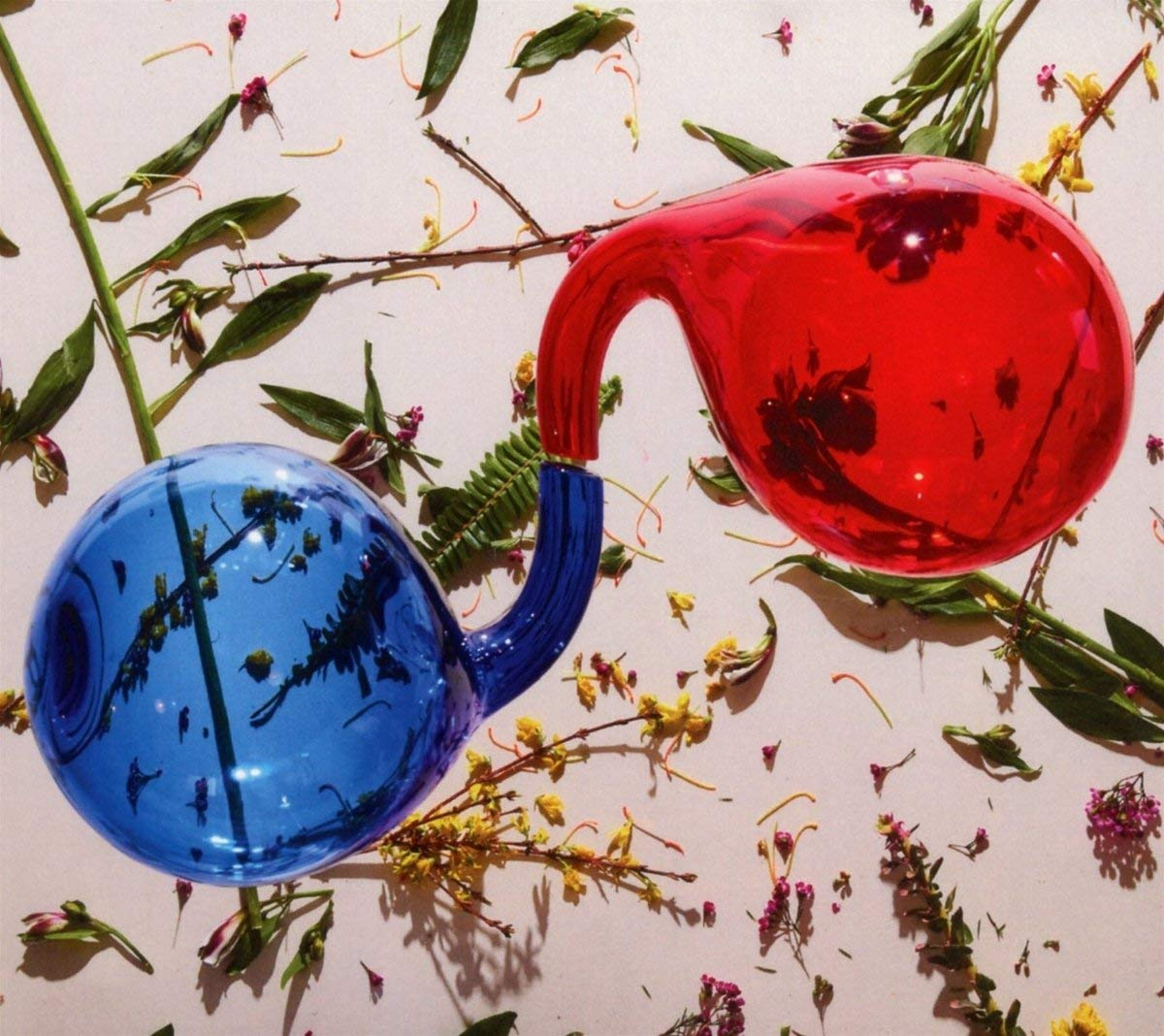 Dirty Projectors - Lamp Lit Prose [Indie Exclusive Limited Edition LP]