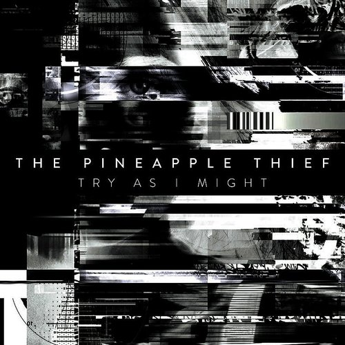 The Pineapple Thief - Try As I Might - Single