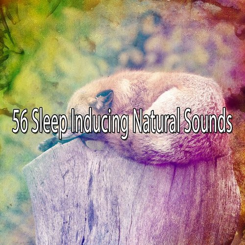 Top of the Poppers - 56 Sleep Inducing Natural Sounds