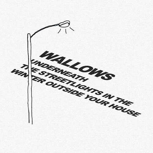 Wallows - Underneath The Streetlights In The Winter Outside Your House - Single
