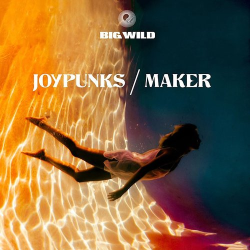 Big Wild - Joypunks / Maker - Single