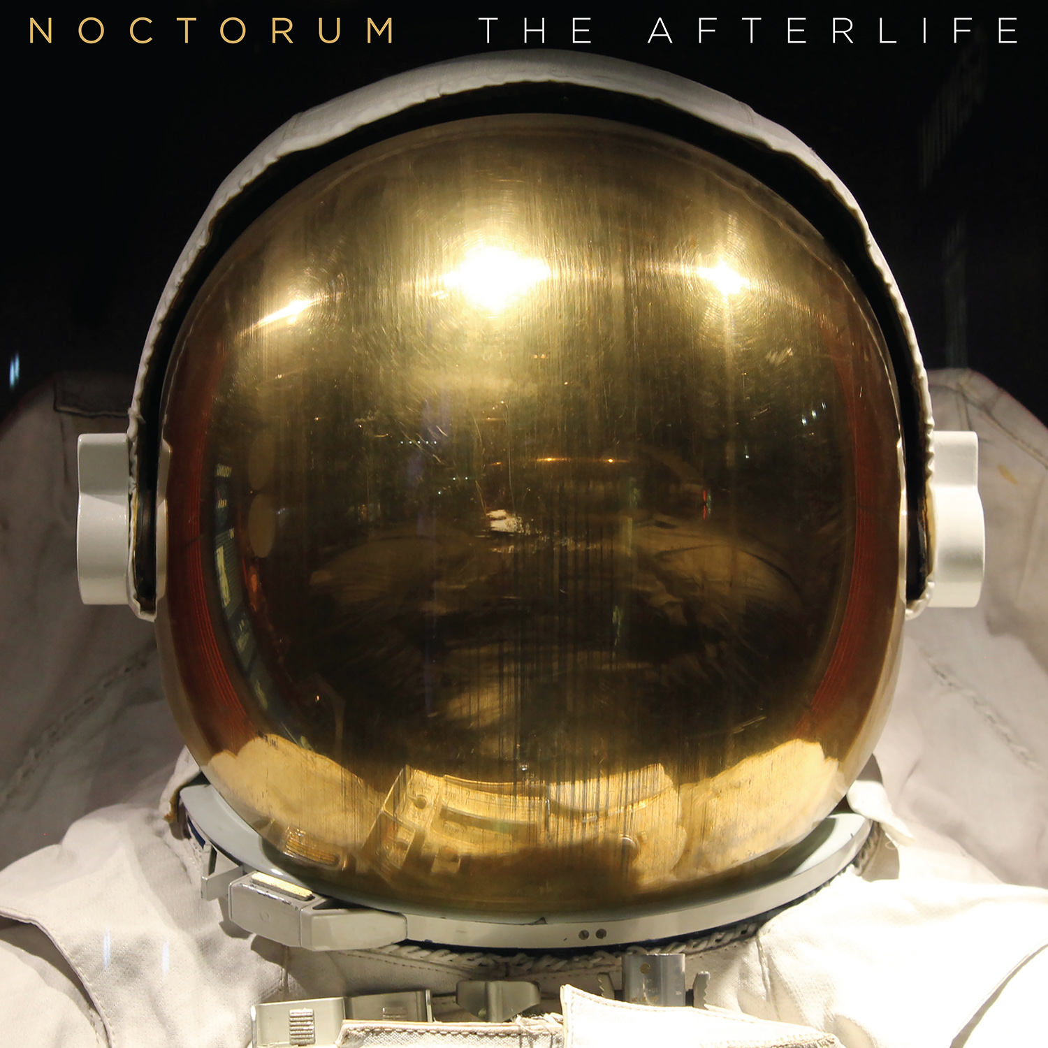 The Afterlife [LP]