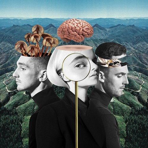 Clean Bandit - What Is Love? [Deluxe]