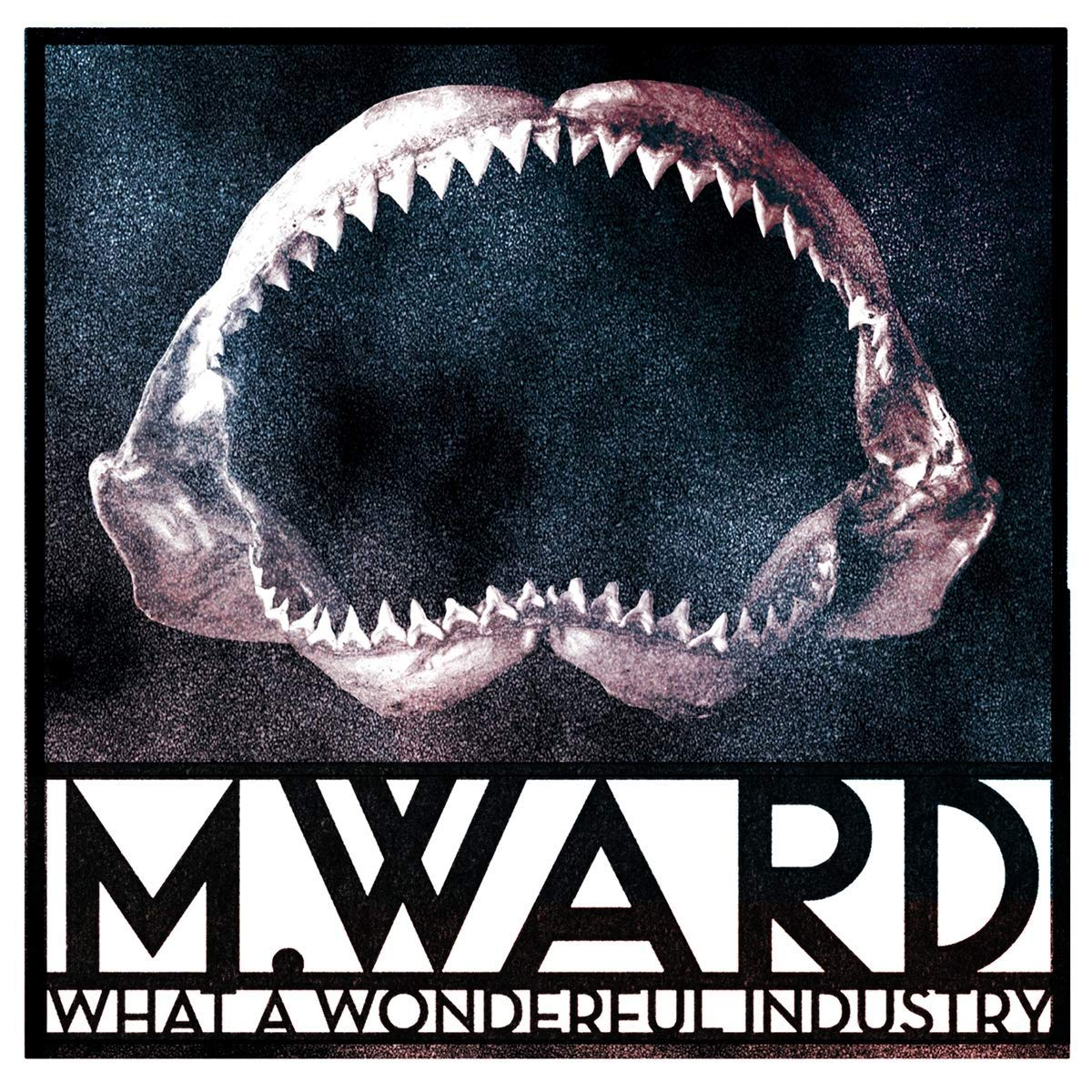 M. Ward - What A Wonderful Industry [Limited Edition Clear LP]