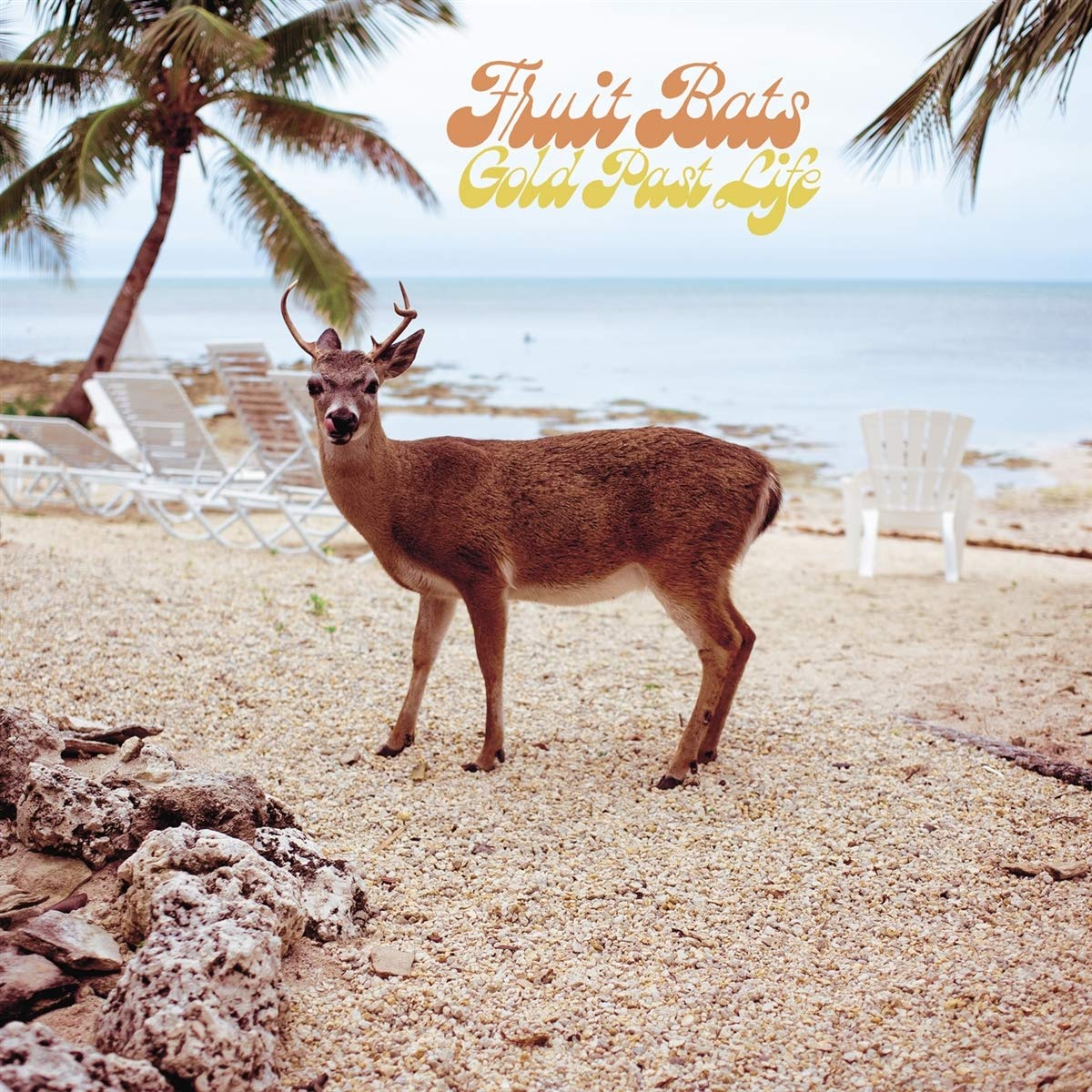 Fruit Bats - Gold Past Life [Indie Exclusive Limited Edition LP]