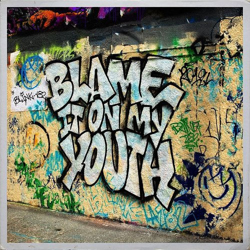 blink-182 - Blame It On My Youth - Single
