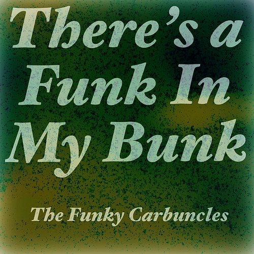 The Funky Carbuncles - There's A Funk In My Bunk - Single