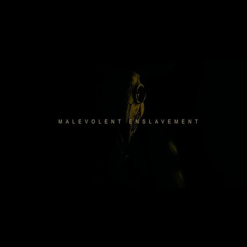 Signs of the Swarm - Malevolent Enslavement - Single