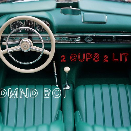 Dmnd BOI - 2 Cups 2 Lit - Single