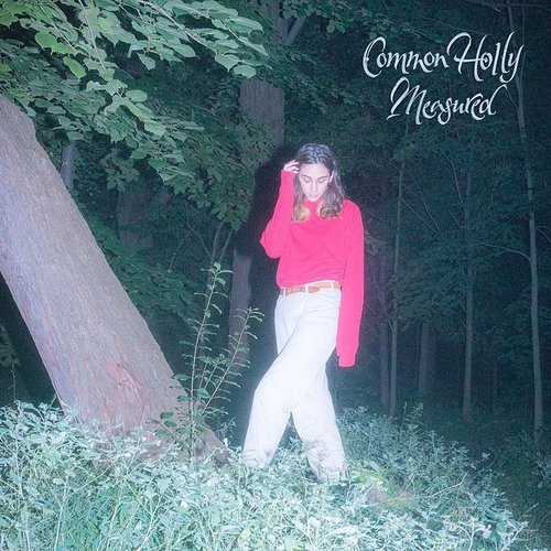 Common Holly - Measured - Single