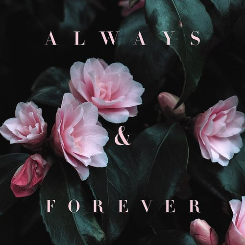 Lily Kershaw - Always & Forever - Single