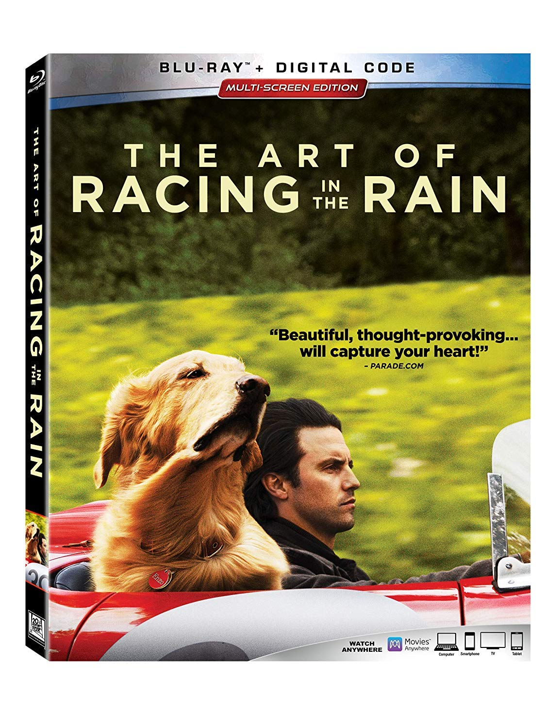 The Art of Racing in the Rain [Movie]