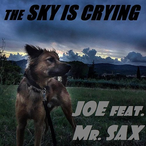 Joe - The Sky Is Crying (Feat. Mr. Sax)
