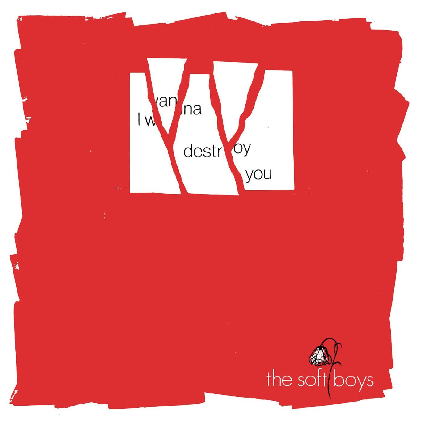 The Soft Boys - I Wanna Destroy You / Near The Soft Boys (40th Anniversary Edition) [RSD Drops Aug 2020]