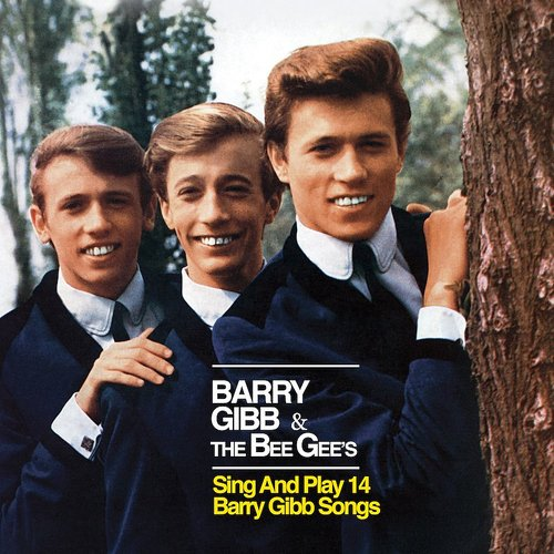 Barry Gibb - The Bee Gee's Sing & Play 14 Barry Gibb Songs