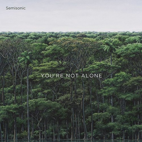 Semisonic - You're Not Alone - Single