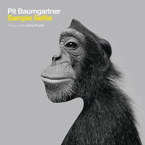 Pit Baumgartner - Sample Selfie