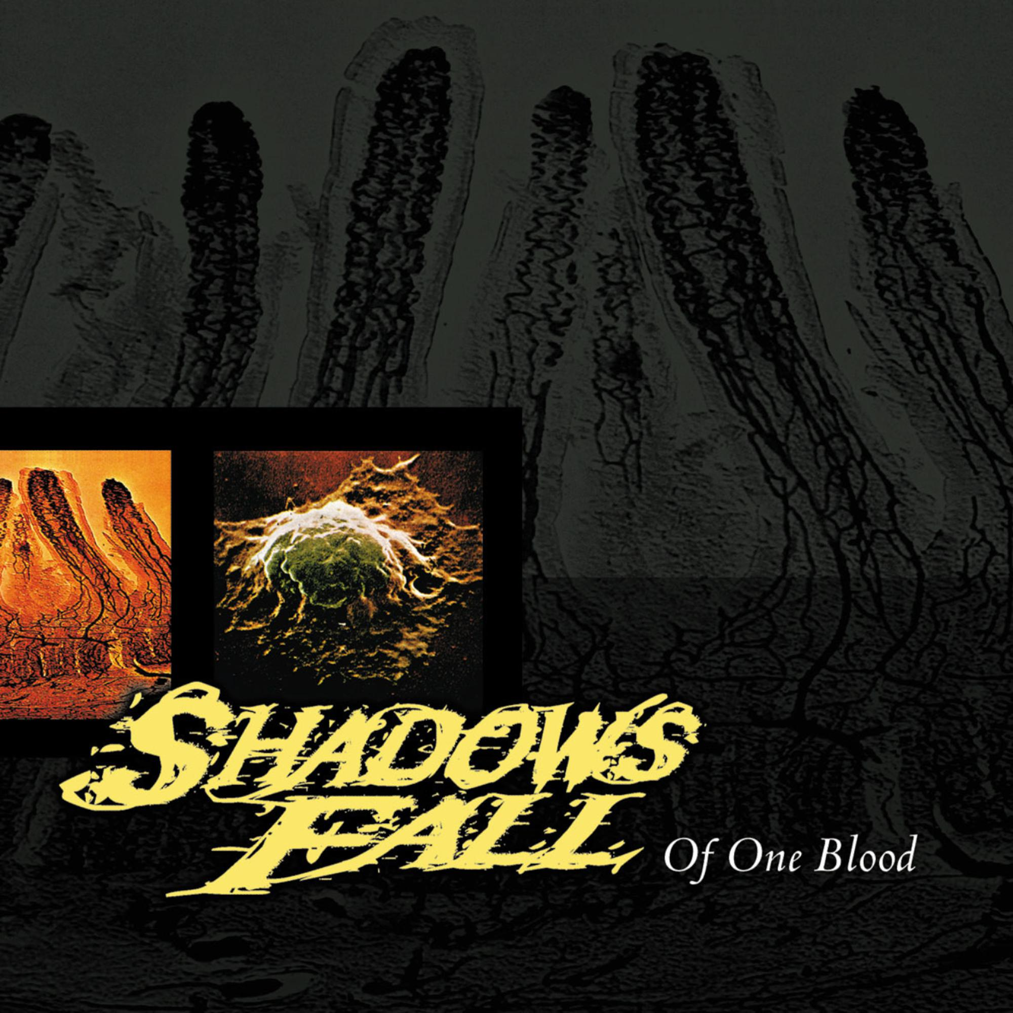 Shadows Fall - Of One Blood [RSD BF 2020]