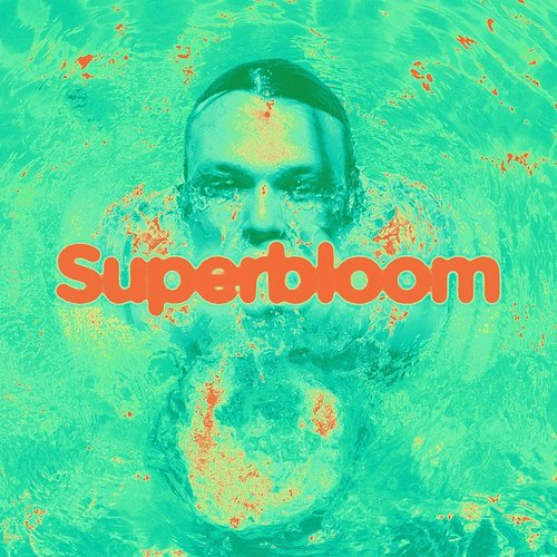 Ashton Irwin - Superbloom [Import]