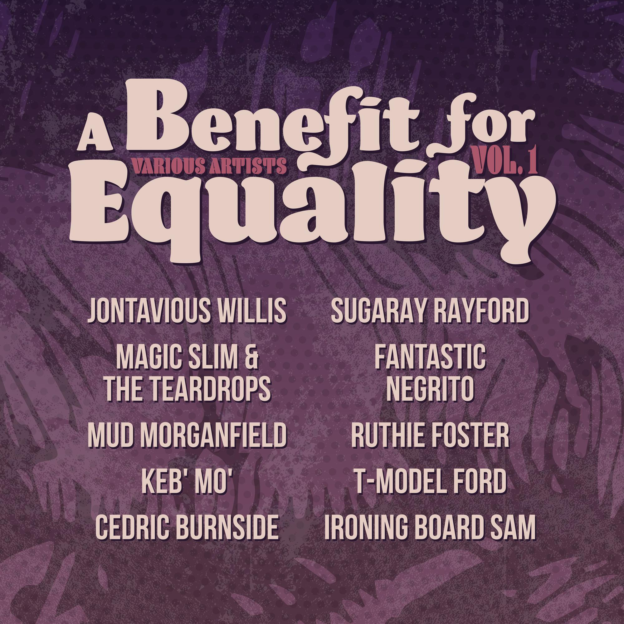 Various Artists - A Benefit For Equality Vol. 1 [Indie Exclusive Limited Edition LP]