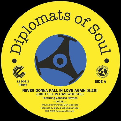 Diplomats Of Soul - Never Gonna Fall In Love Again (Like I Fell In)