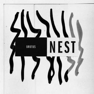 Nest [Import LP]