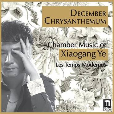 December Chrysanthemum