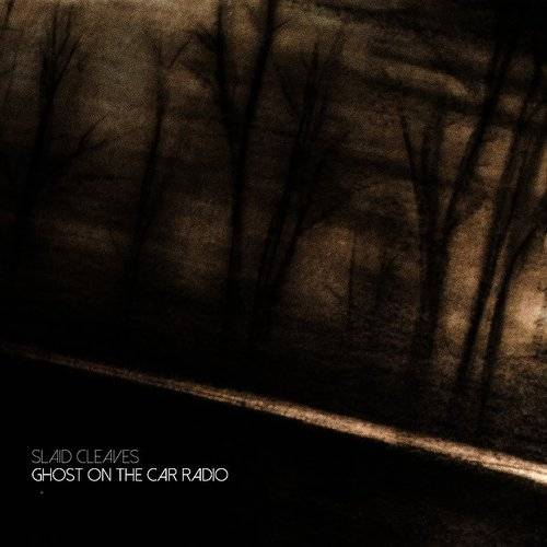 Ghost On The Car Radio [Import]
