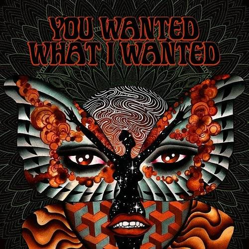 You Wanted What I Wanted - Single
