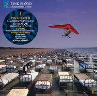 Pink Floyd - A Momentary Lapse Of Reason: Remixed & Updated [2LP]