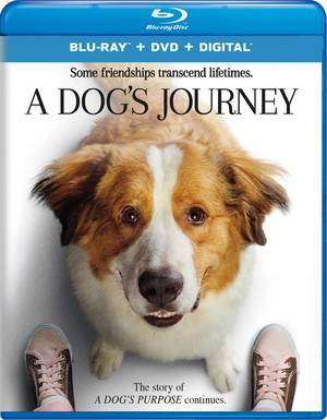 A Dog's Journey [Movie]