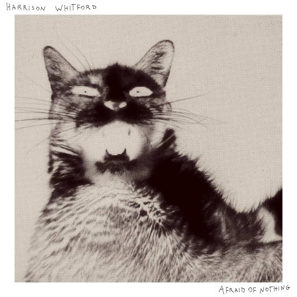 Harrison Whitford - Afraid Of Nothing [LP]