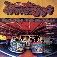The Waterboys - Room To Roam (Half Speed Master) [2LP]