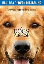 A Dog's Purpose [Movie] - A Dog's Purpose