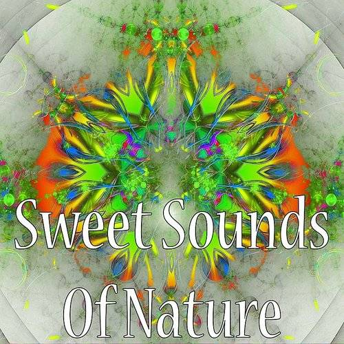 Sweet Sounds Of Nature