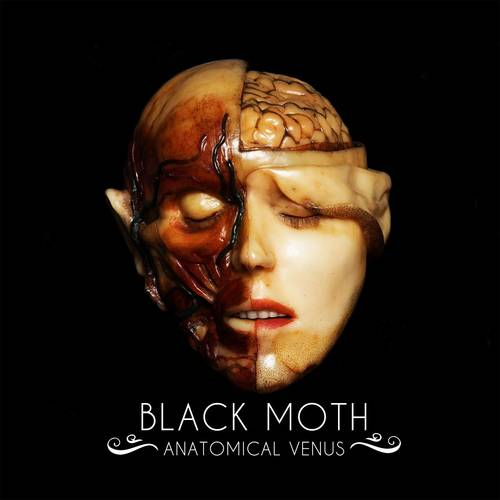 Anatomical Venus [LP]